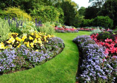 Cour et jardinage